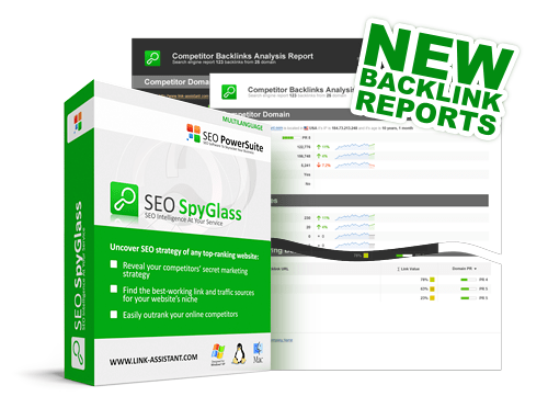 New backlink reports in SEO SpyGlass