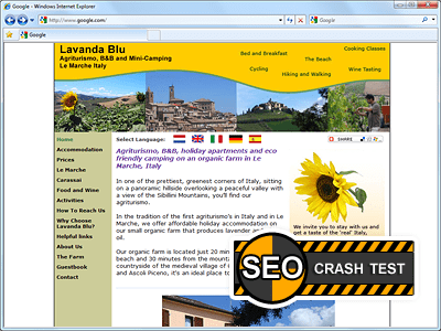 SEO Crash-Test 50