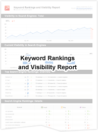 Keyword Rankings and Visibility Report