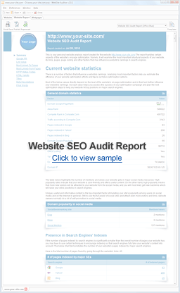 Website Structure Audit Report
