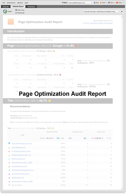 Page Optimization Audit Report