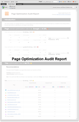 Page Optimiation Audit Report