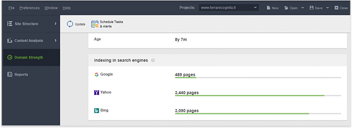 Check how many pages of the site are indexed